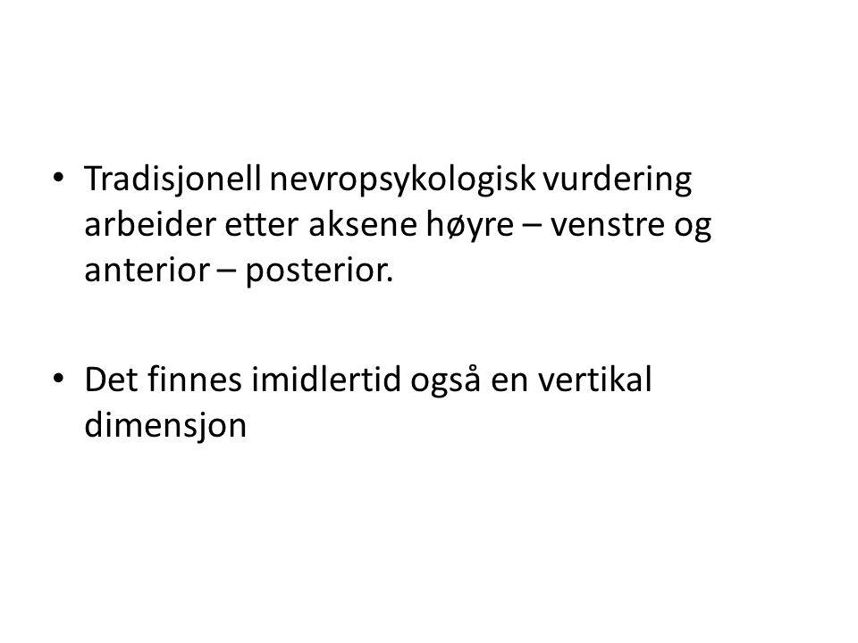 Tradisjonell nevropsykologisk vurdering arbeider etter aksene høyre – venstre og anterior – posterior.