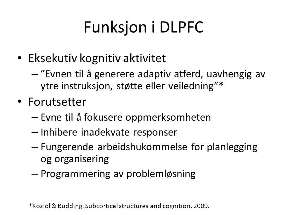 Funksjon i DLPFC Eksekutiv kognitiv aktivitet Forutsetter