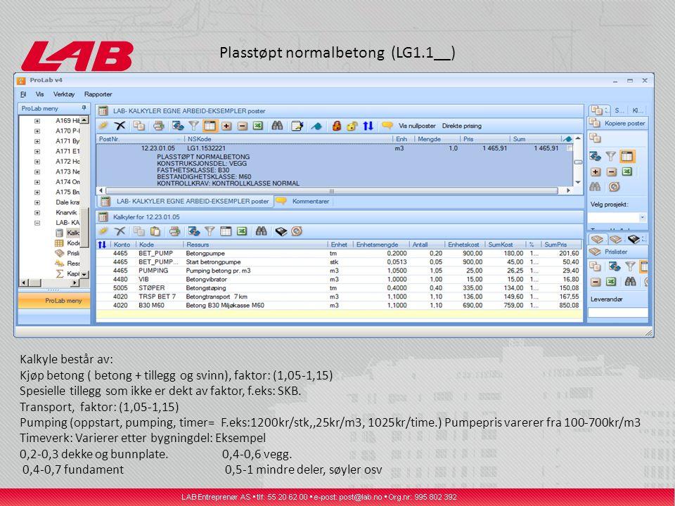 Plasstøpt normalbetong (LG1.1__)