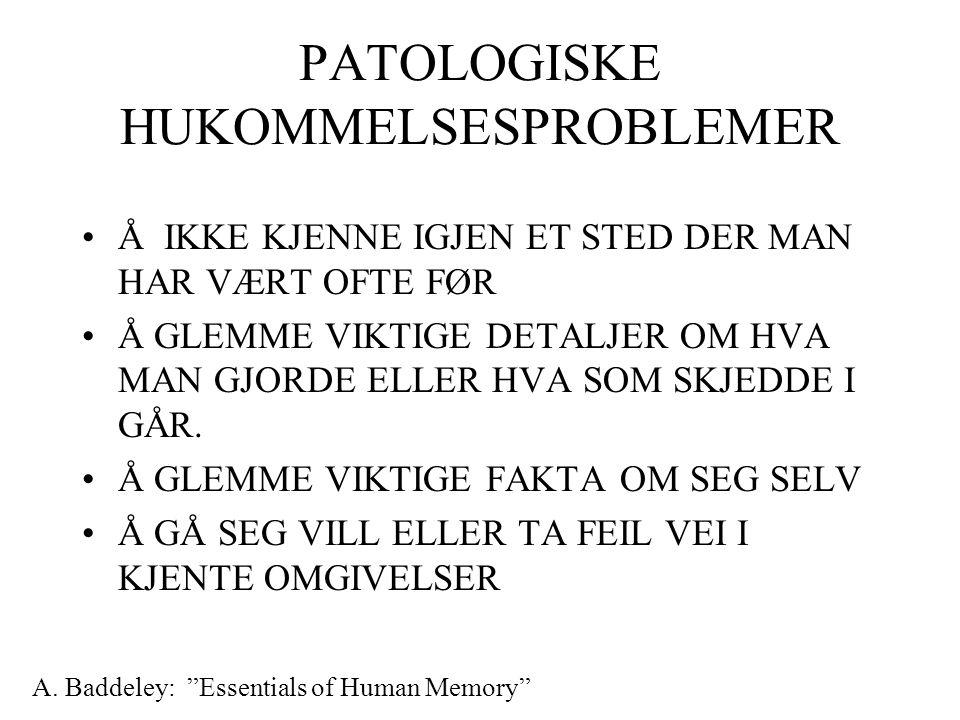 PATOLOGISKE HUKOMMELSESPROBLEMER