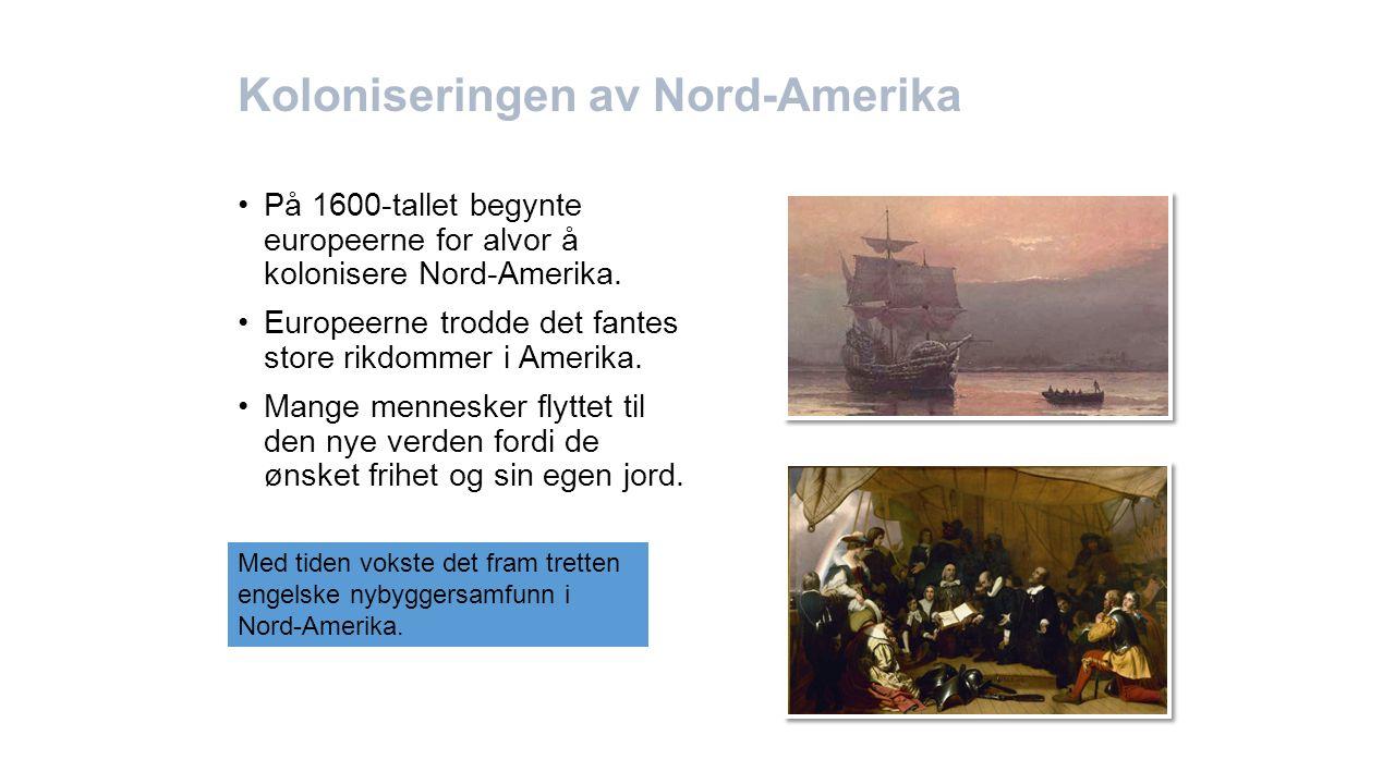 Koloniseringen av Nord-Amerika