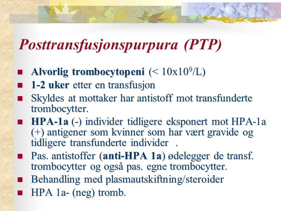 Posttransfusjonspurpura (PTP)
