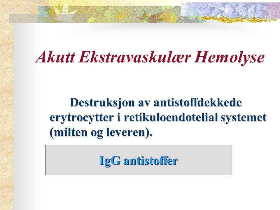 Akutt Ekstravaskulær Hemolyse