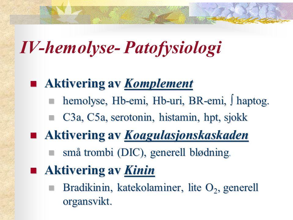 IV-hemolyse- Patofysiologi