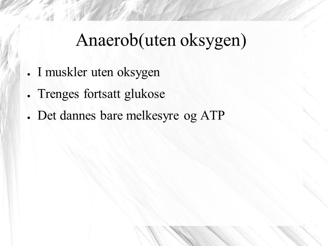 Anaerob(uten oksygen)
