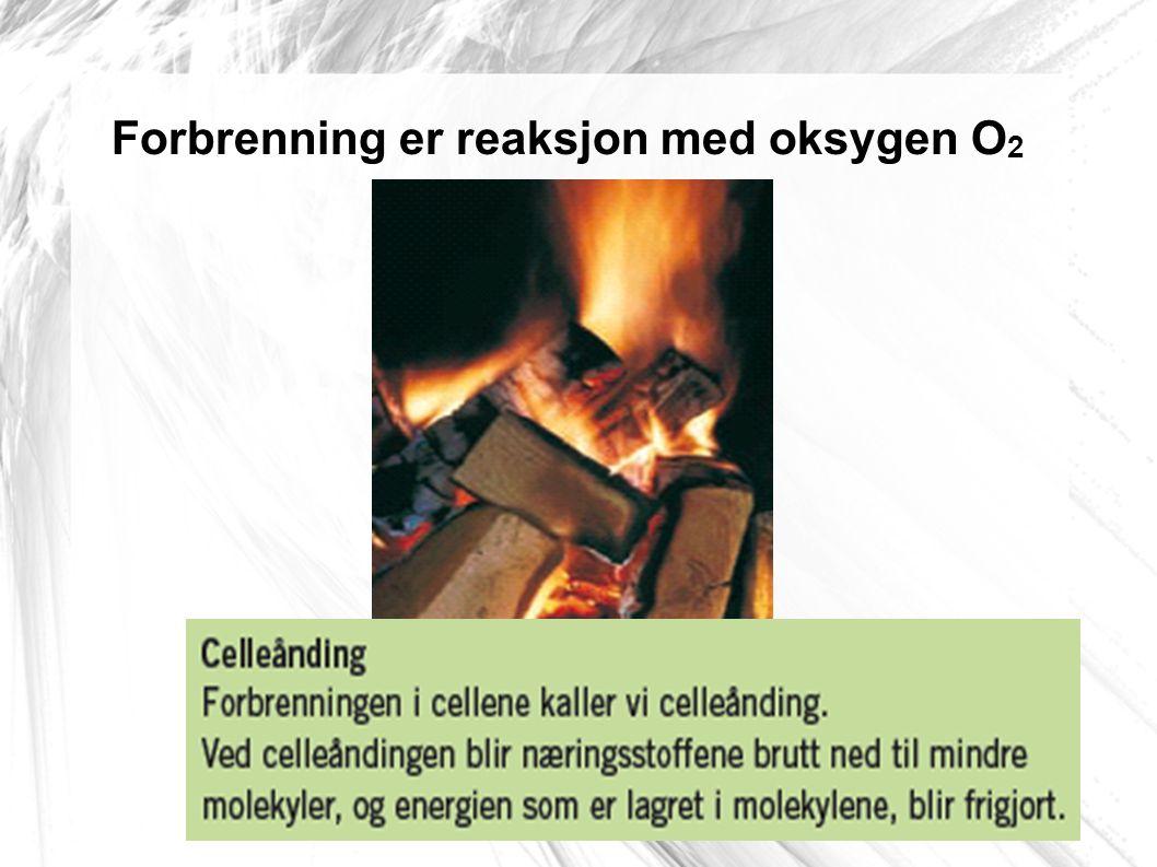 Forbrenning er reaksjon med oksygen O2