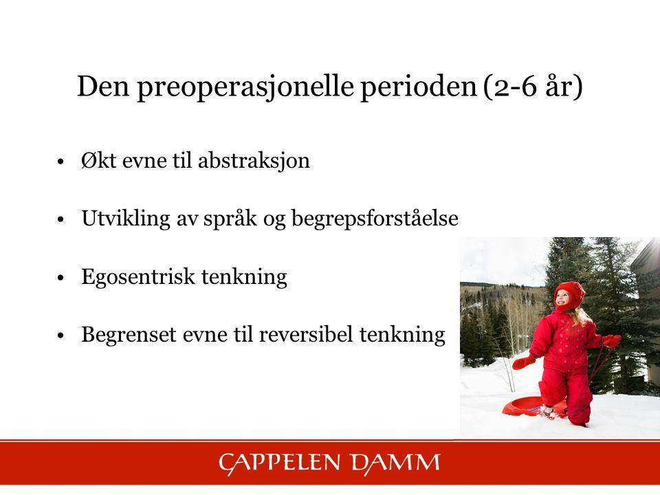 Den preoperasjonelle perioden (2-6 år)
