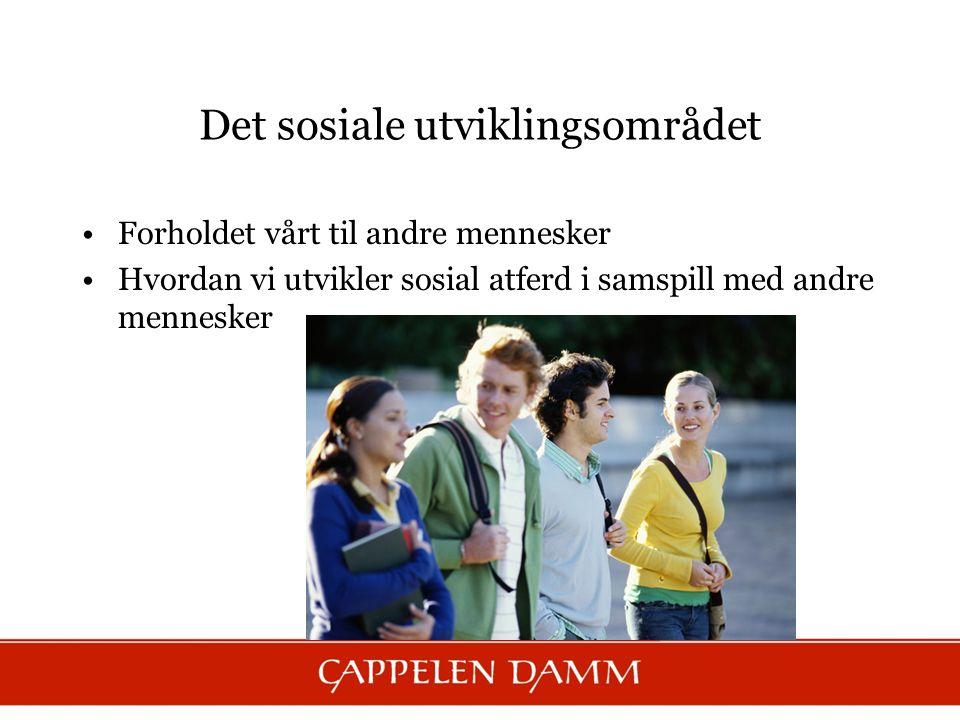 Det sosiale utviklingsområdet