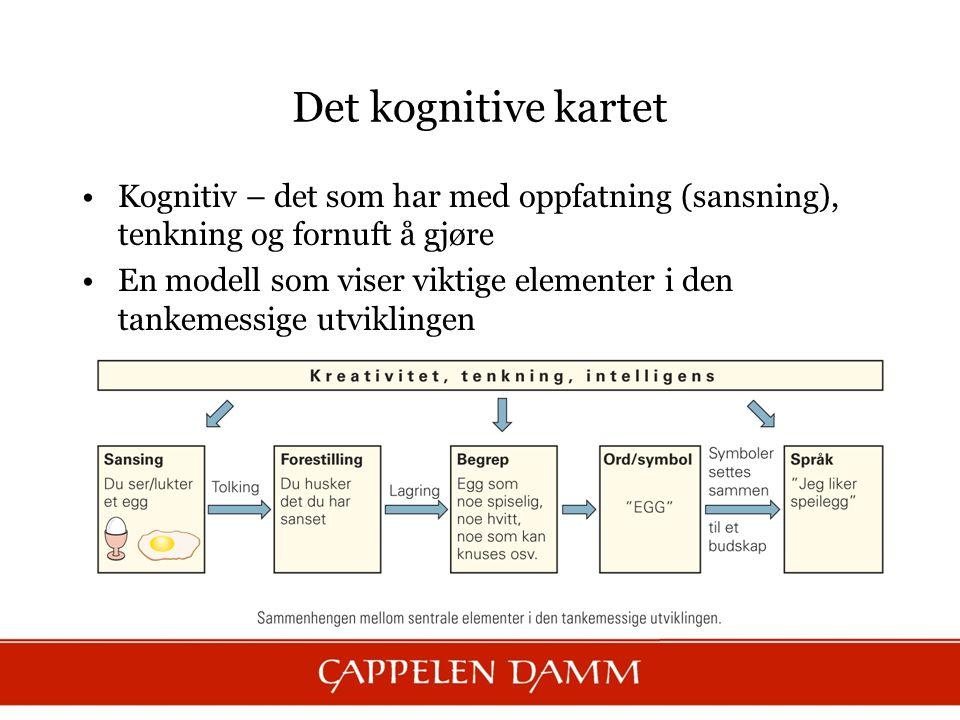 Det kognitive kartet Kognitiv – det som har med oppfatning (sansning), tenkning og fornuft å gjøre.