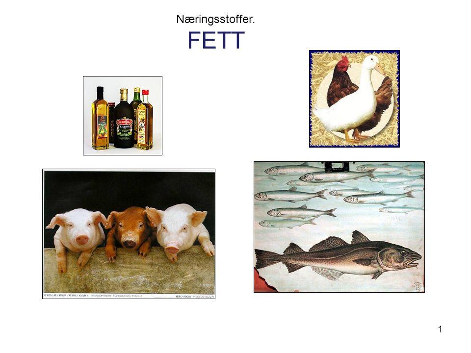 Næringsstoffer. FETT