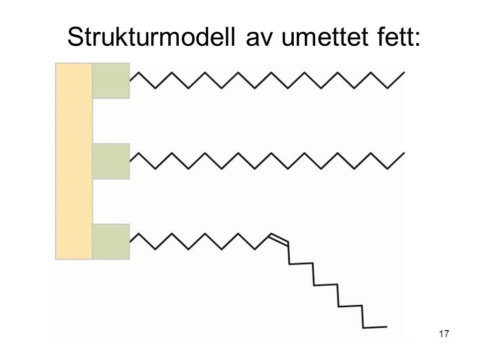 Strukturmodell av umettet fett: