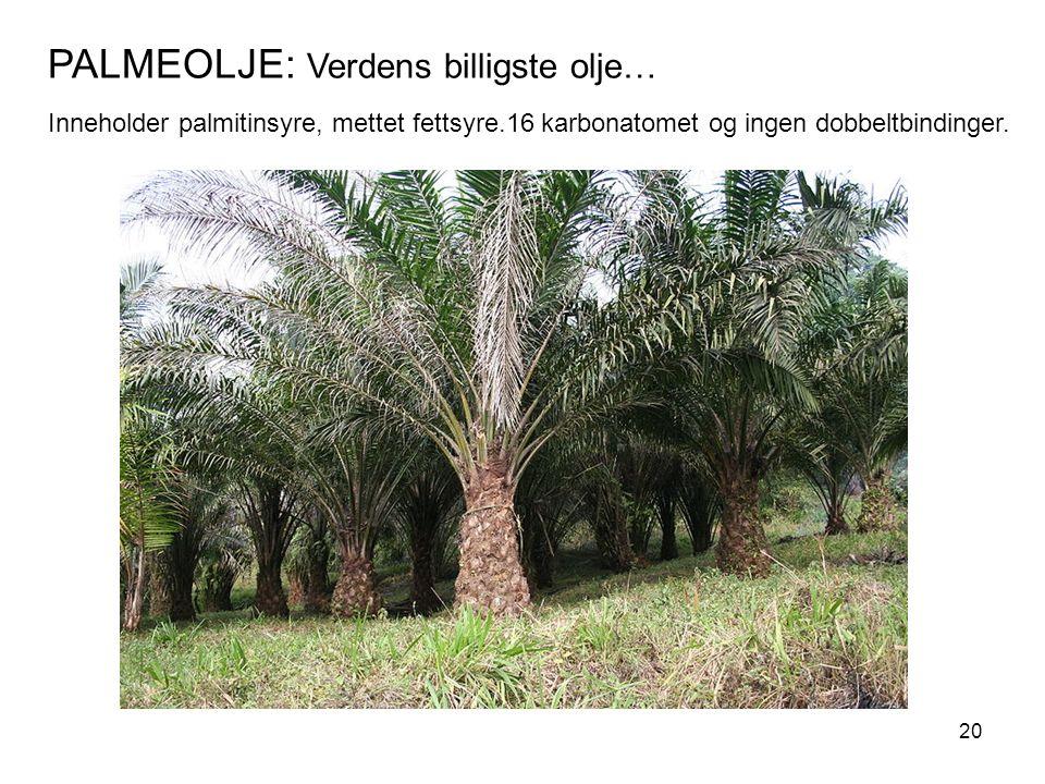 PALMEOLJE: Verdens billigste olje… Inneholder palmitinsyre, mettet fettsyre.16 karbonatomet og ingen dobbeltbindinger.
