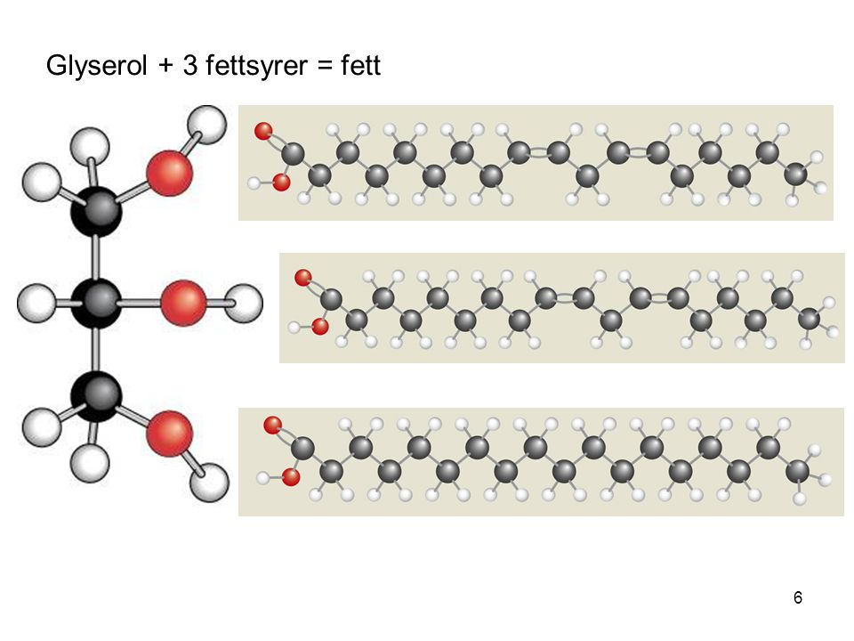 Glyserol + 3 fettsyrer = fett