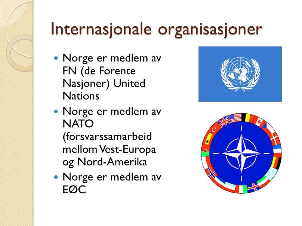 Internasjonale organisasjoner