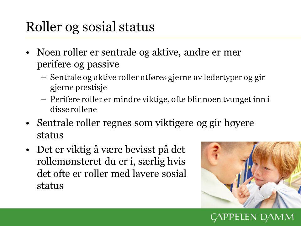 Roller og sosial status