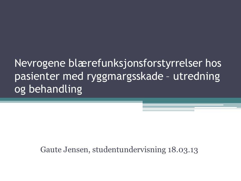 Gaute Jensen, studentundervisning 18.03.13