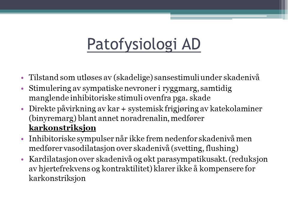 Patofysiologi AD Tilstand som utløses av (skadelige) sansestimuli under skadenivå.