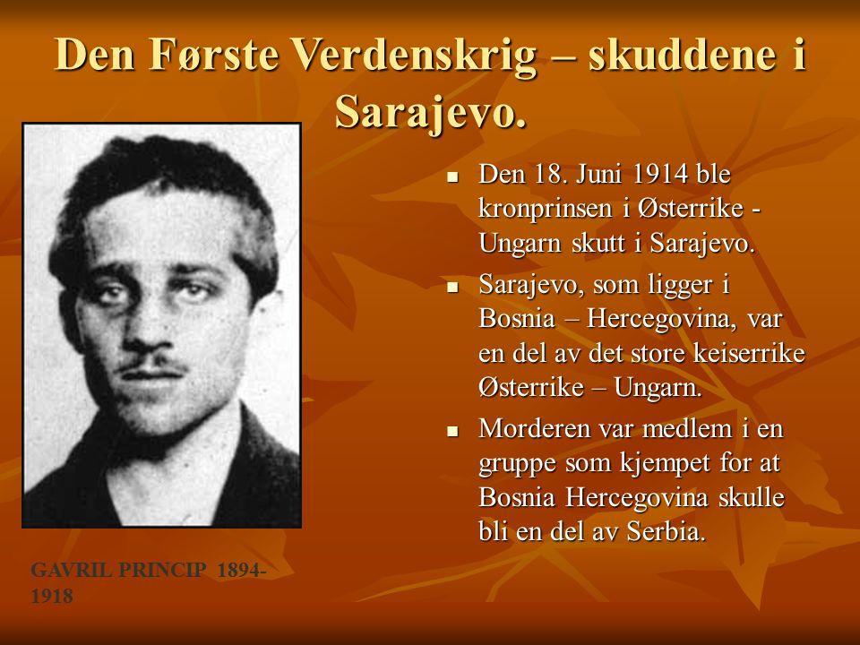 Den Første Verdenskrig – skuddene i Sarajevo.