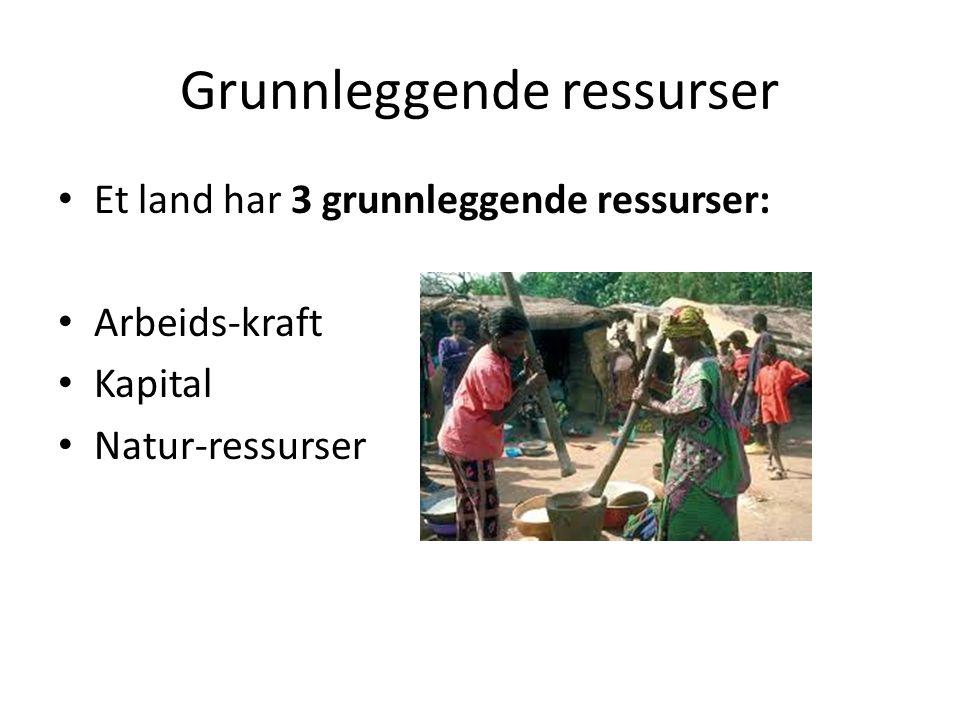 Grunnleggende ressurser