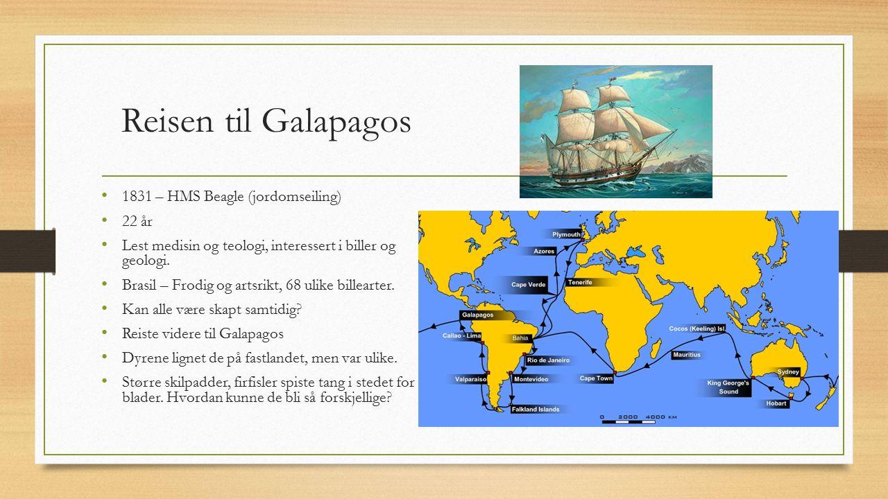 Reisen til Galapagos 1831 – HMS Beagle (jordomseiling) 22 år