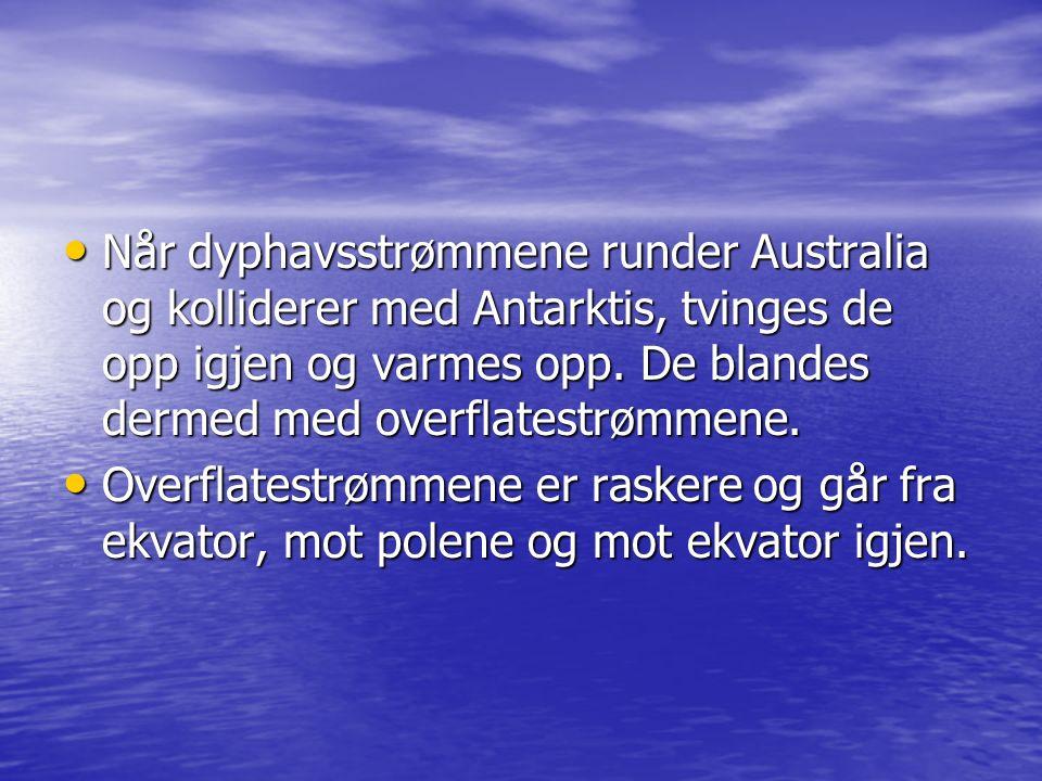 Når dyphavsstrømmene runder Australia og kolliderer med Antarktis, tvinges de opp igjen og varmes opp. De blandes dermed med overflatestrømmene.