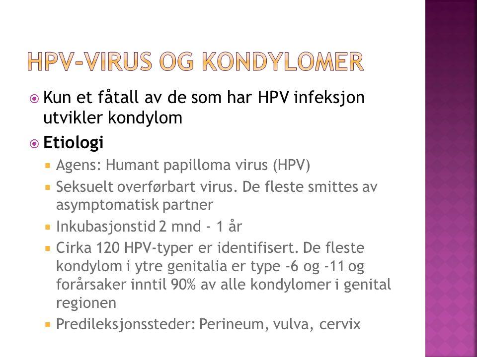 HPV-virus og kondylomer