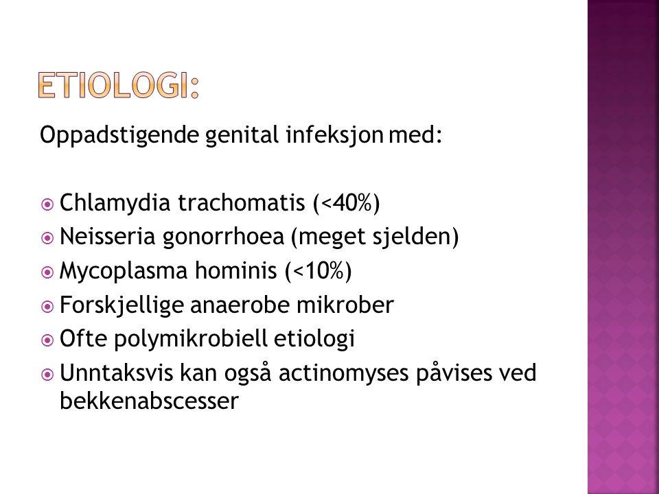 Etiologi: Oppadstigende genital infeksjon med:
