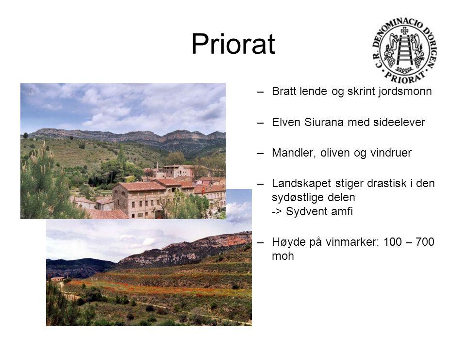Priorat Bratt lende og skrint jordsmonn Elven Siurana med sideelever