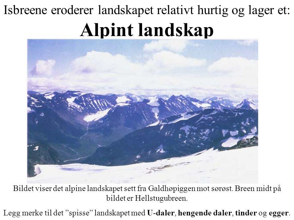 Isbreene eroderer landskapet relativt hurtig og lager et: Alpint landskap