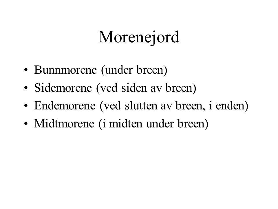 Morenejord Bunnmorene (under breen) Sidemorene (ved siden av breen)