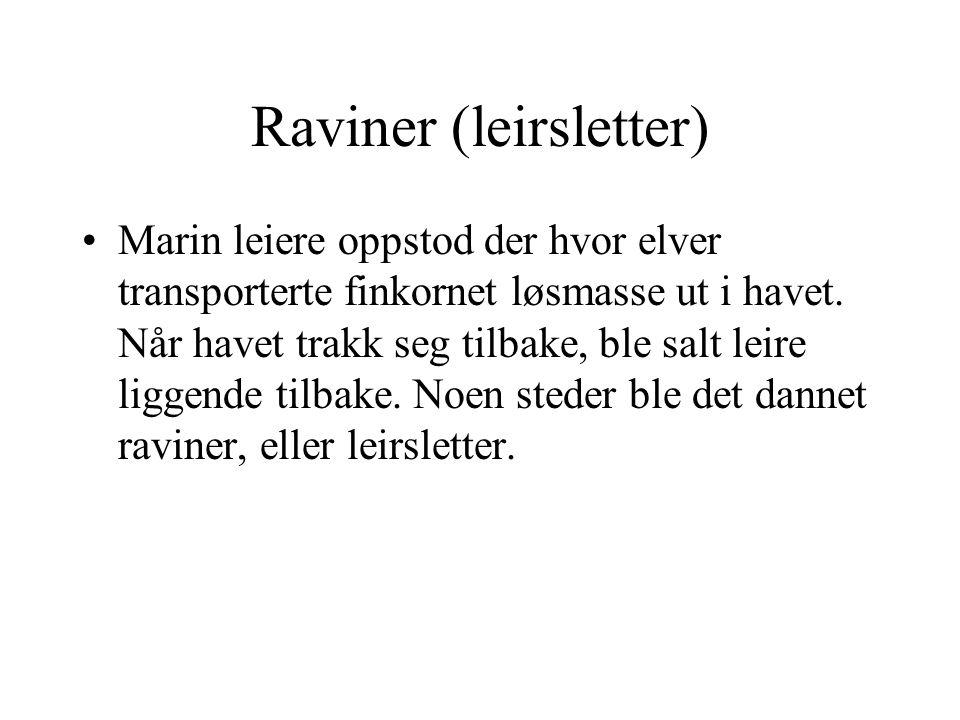 Raviner (leirsletter)