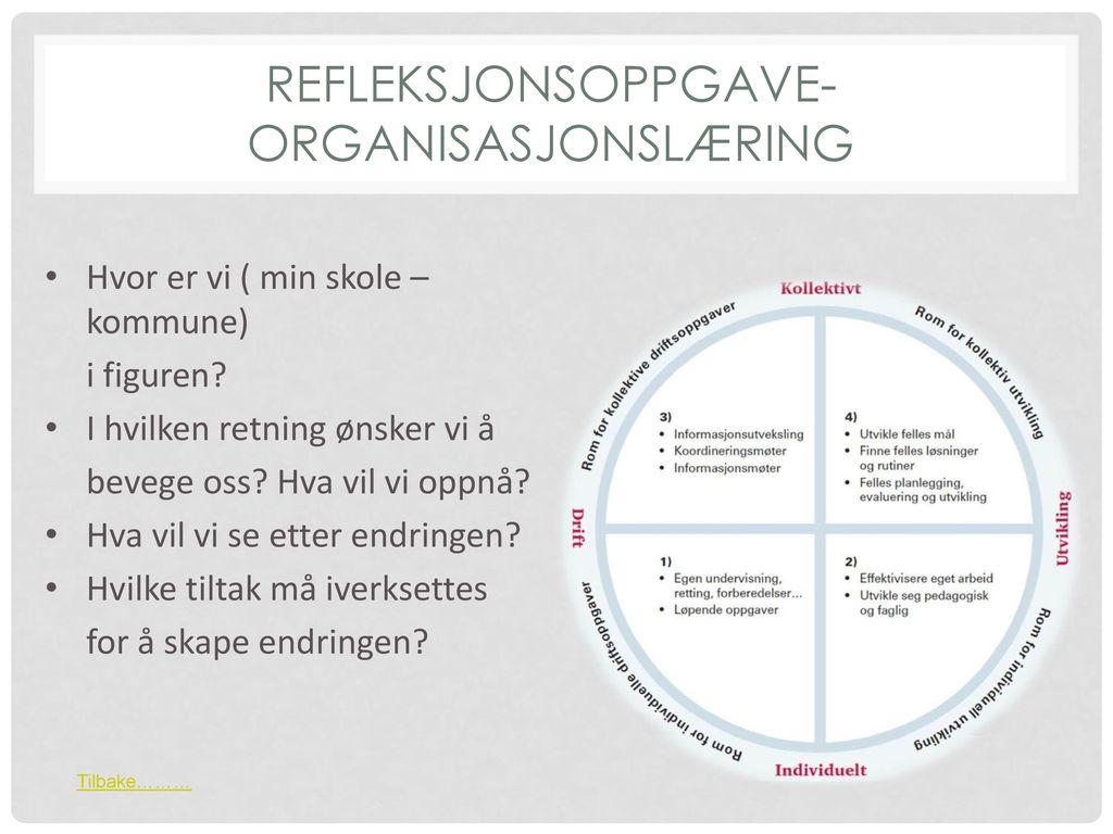 Refleksjonsoppgave- organisasjonslæring