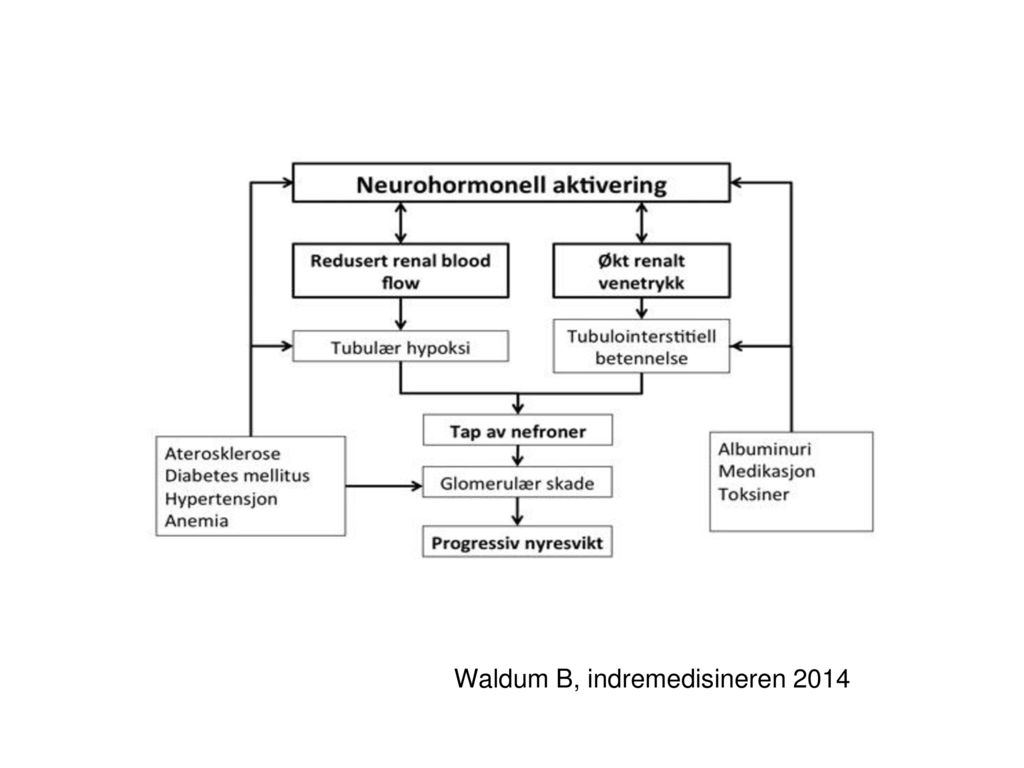 Waldum B, indremedisineren 2014