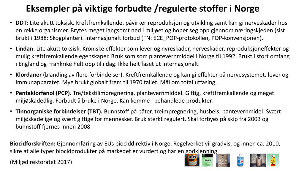 de fem sikre soppene i norge