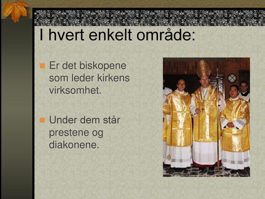 I hvert enkelt område: Er det biskopene som leder kirkens virksomhet.