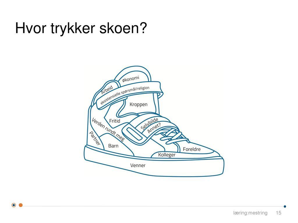 Hvor trykker skoen læring:mestring
