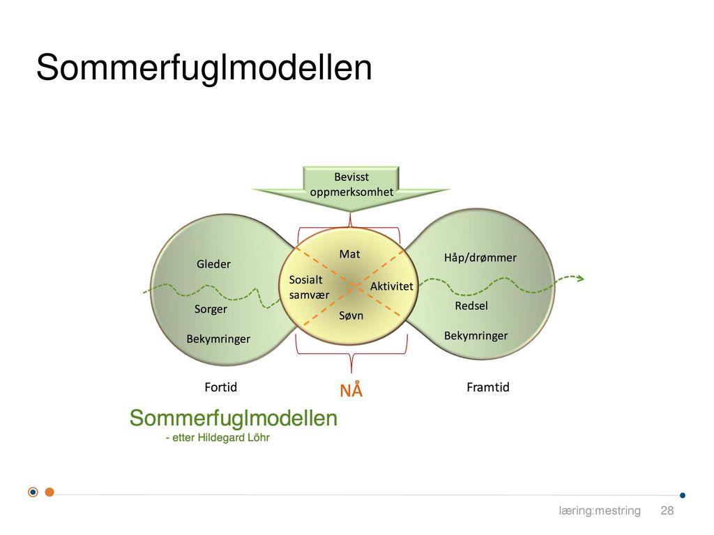 Sommerfuglmodellen læring:mestring