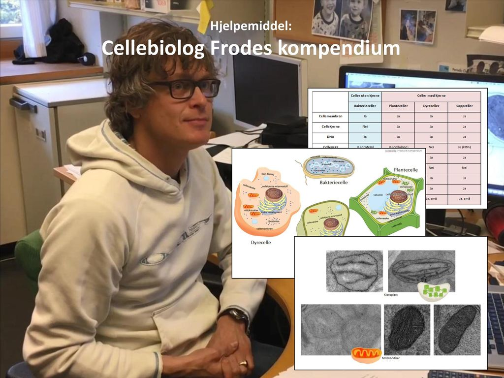 Cellebiolog Frodes kompendium