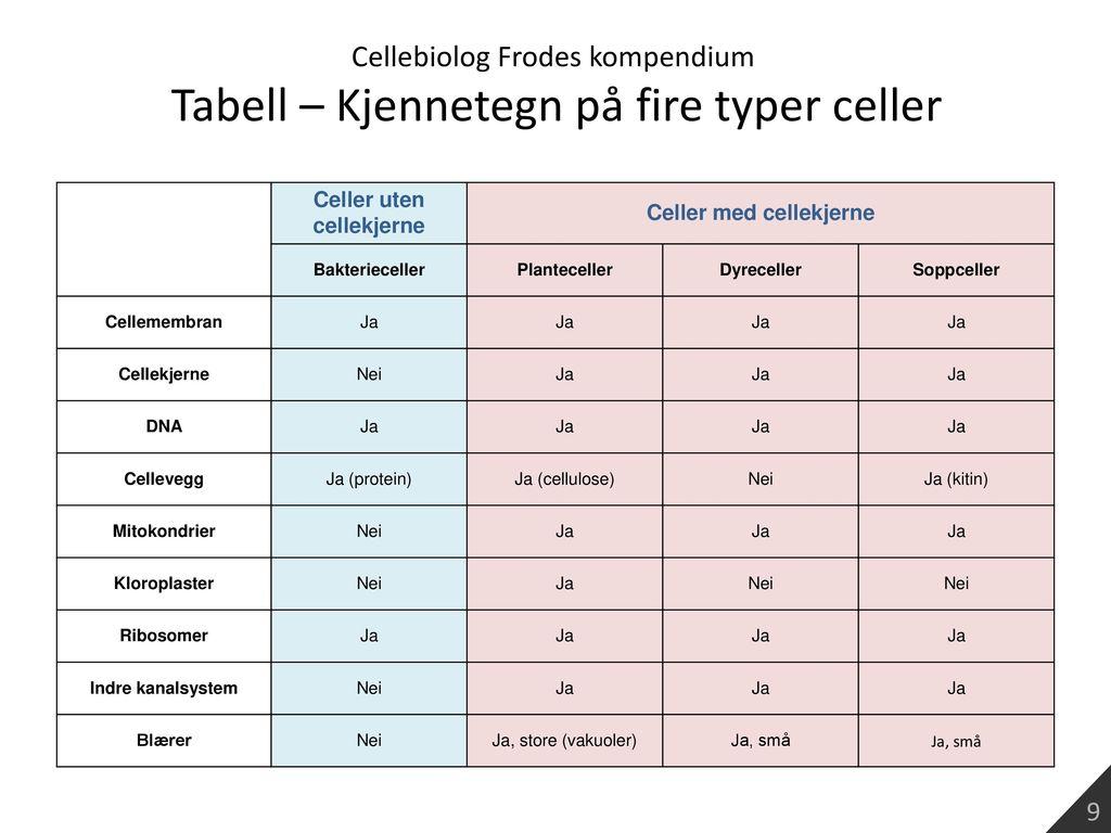 Celler uten cellekjerne Celler med cellekjerne