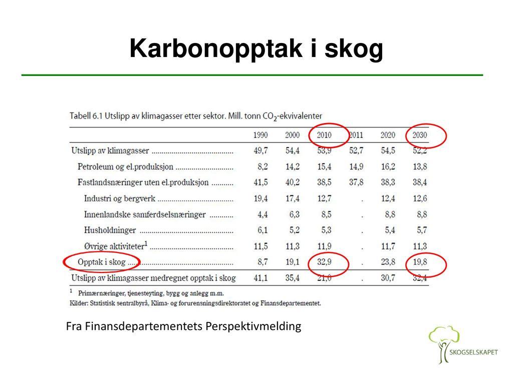 avvirkning skog norge