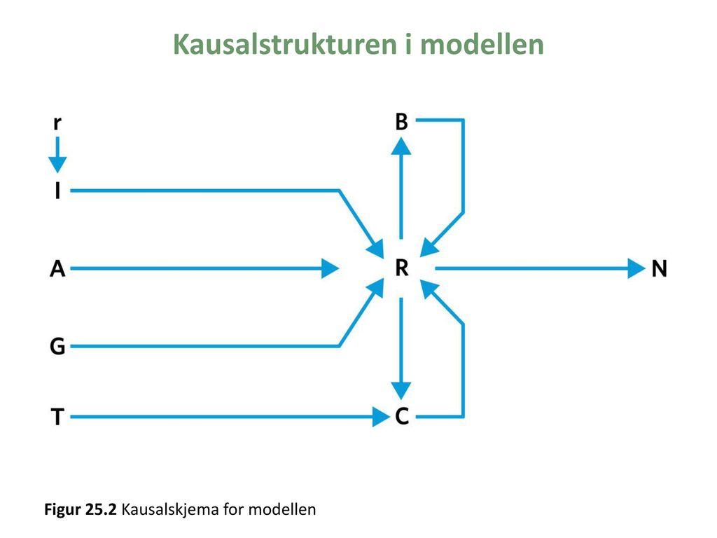 Kausalstrukturen i modellen