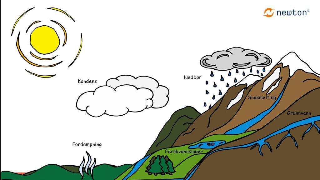 Vannets kretsløp: Fordampet vann fraktes inn over land med vinden og faller ned som regn.