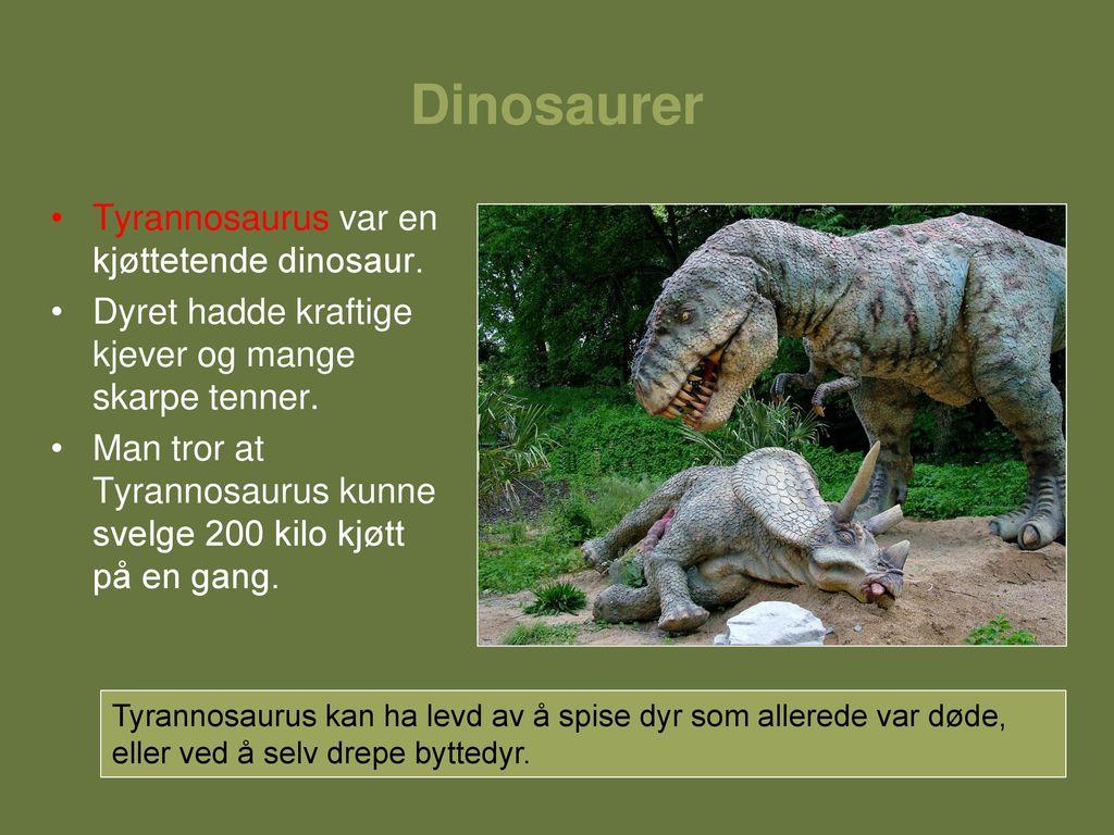 ekte dinosaurer tegning