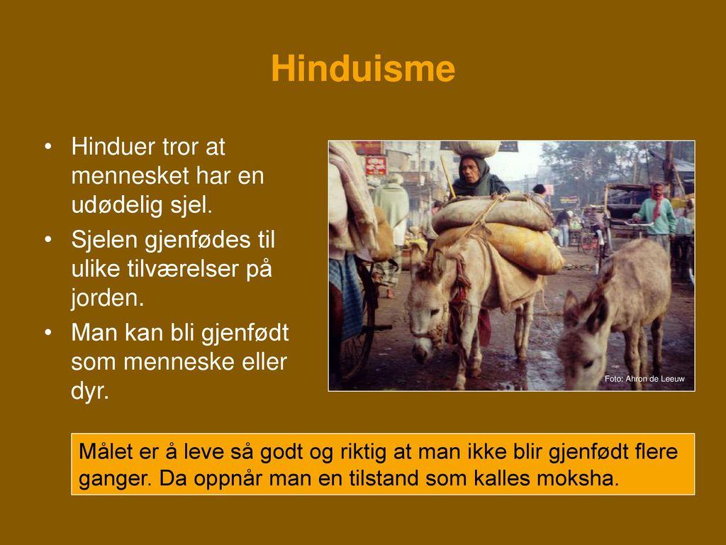 Hinduisme Hinduer tror at mennesket har en udødelig sjel.