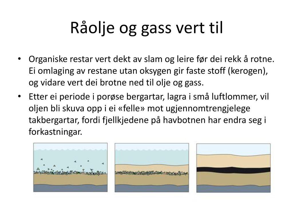 olje blir til