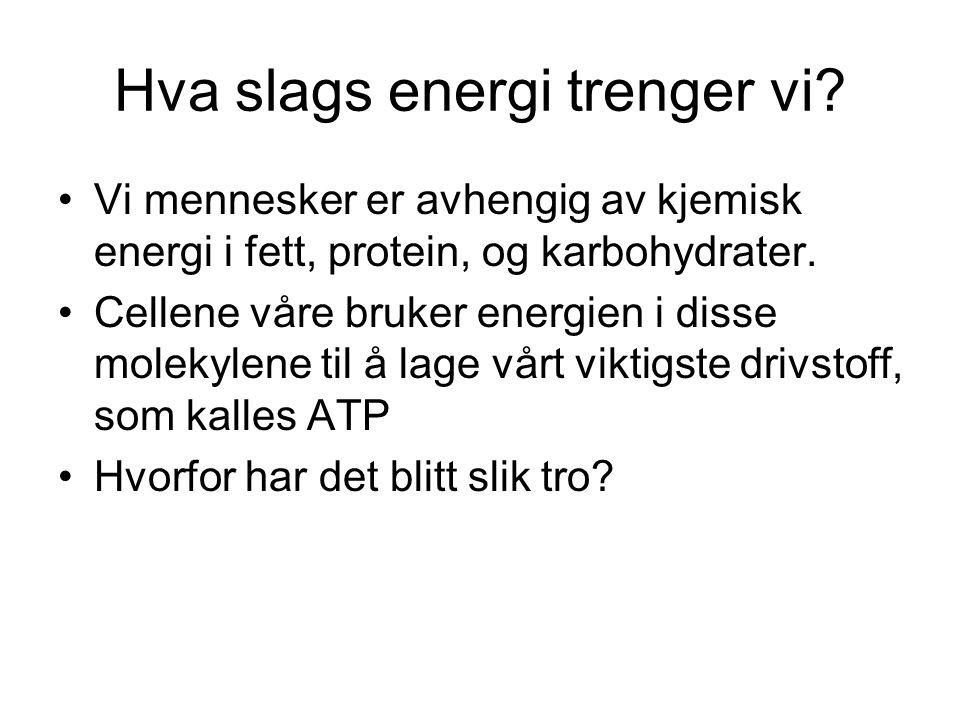 Hva slags energi trenger vi