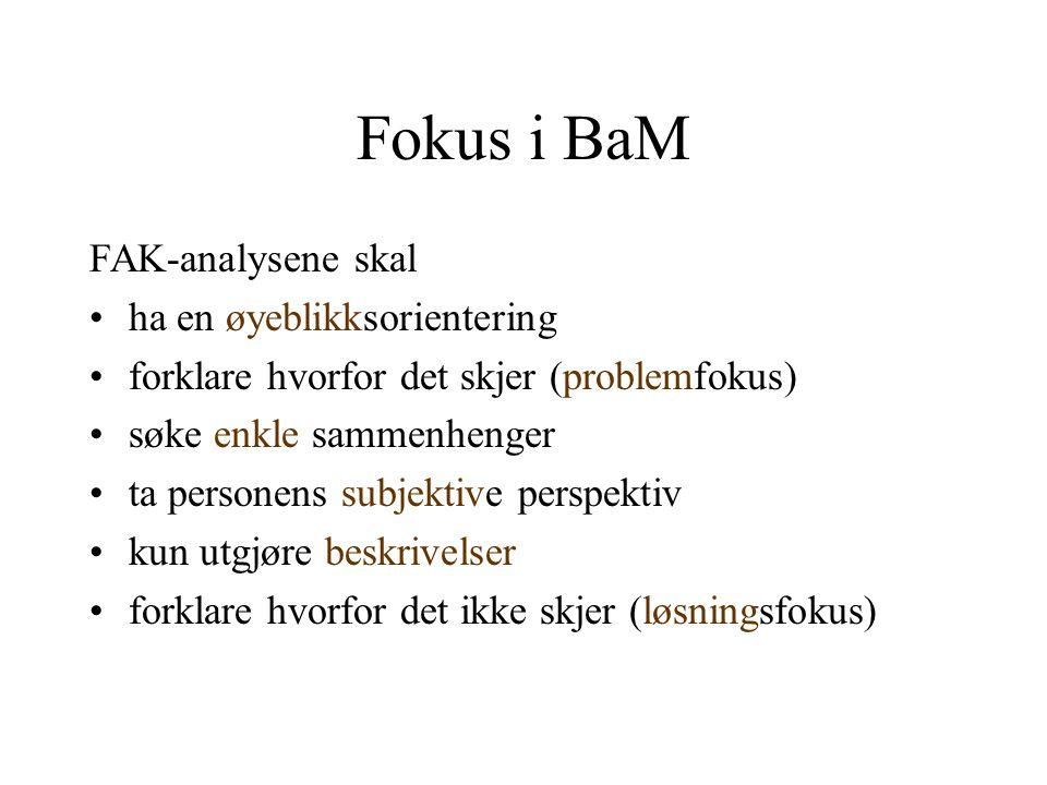 Fokus i BaM FAK-analysene skal ha en øyeblikksorientering