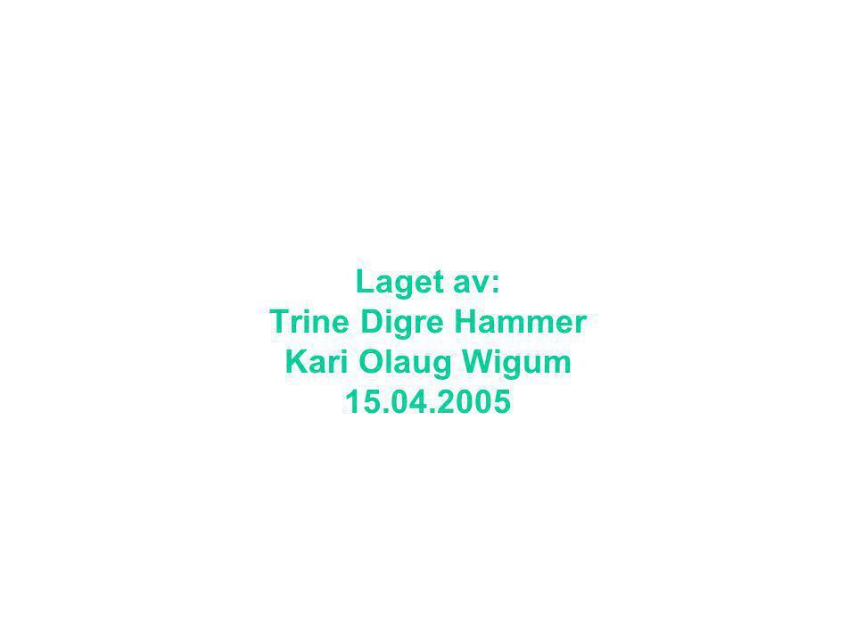 Laget av: Trine Digre Hammer Kari Olaug Wigum 15.04.2005