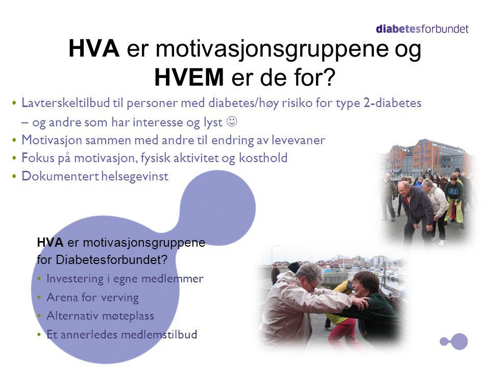HVA er motivasjonsgruppene og HVEM er de for