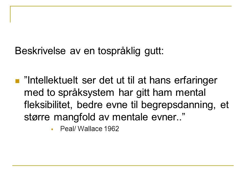 Beskrivelse av en tospråklig gutt:
